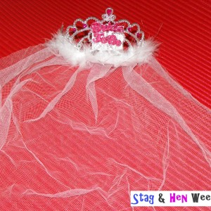 Bride to Be Tiara with Fur & Veil - White 2